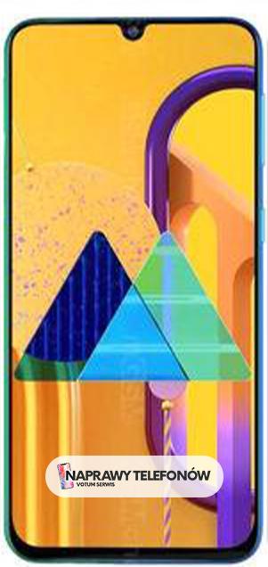 Samsung M30s SM-M307